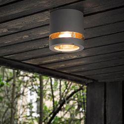 Focus 1xGU10 udendørs loftlampe