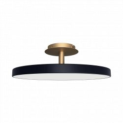 UMAGE Asteria Up loftlampe - Anthracite grey